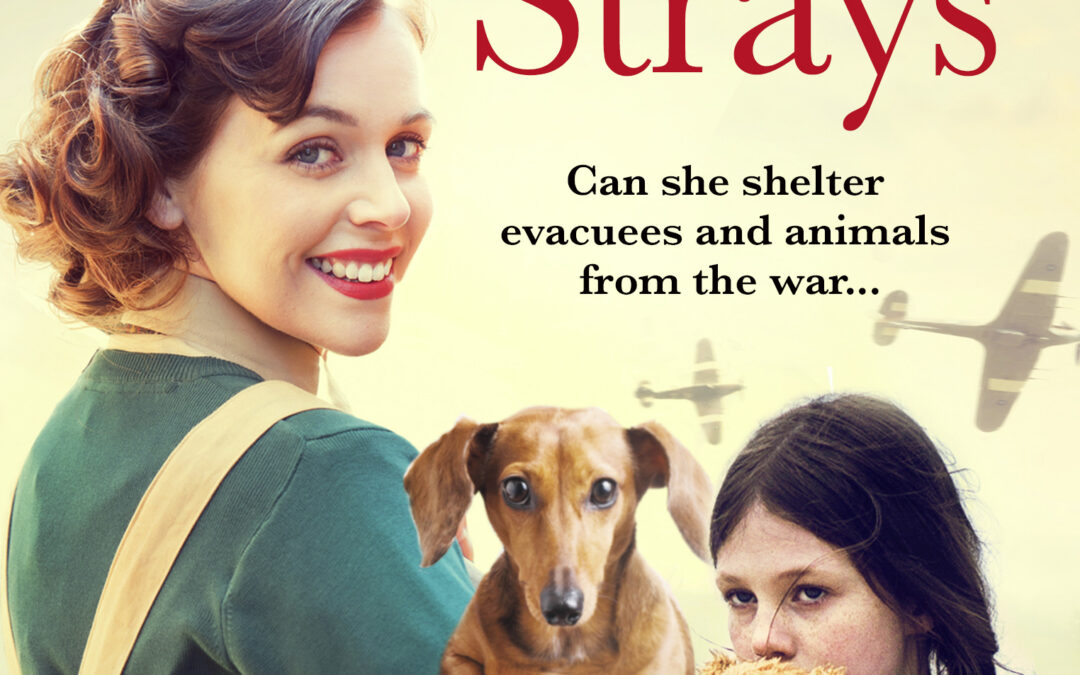 Avon to publish Edie's Home for Strays, an uplifting wartime saga